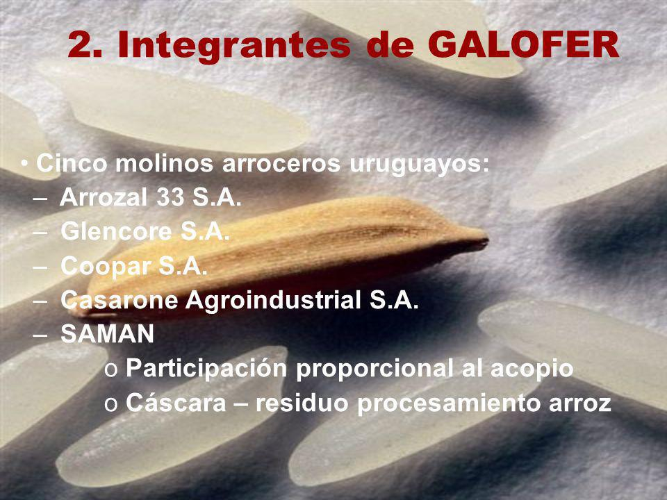 2. Integrantes de GALOFER Cinco molinos arroceros uruguayos: – Arrozal 33 S.A. – Glencore S.A. – Coopar S.A. – Casarone Agroindustrial S.A. – SAMAN o