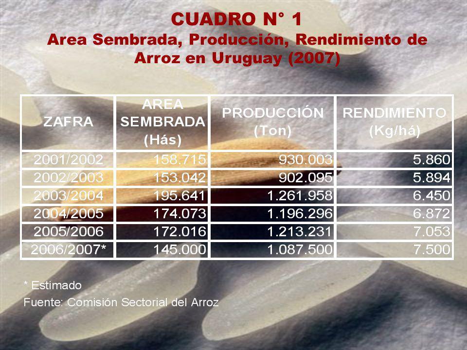 CUADRO N° 2 Uruguay País Arrocero Exportador Destino de las Exportaciones