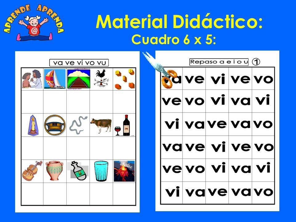 Material Didáctico: Cuadro 6 x 5: Hay unas 120 fichas diferentes para trabajar en ejercicios de Lecto-escritura.