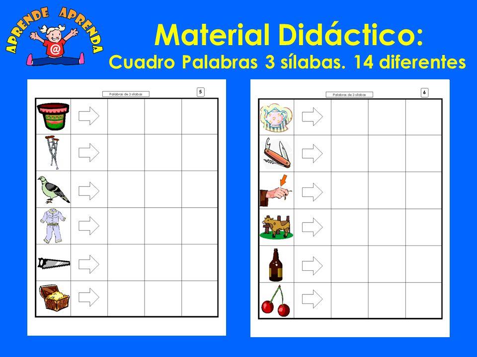 Material Didáctico: Cuadro Palabras 2 sílabas. 14 diferentes
