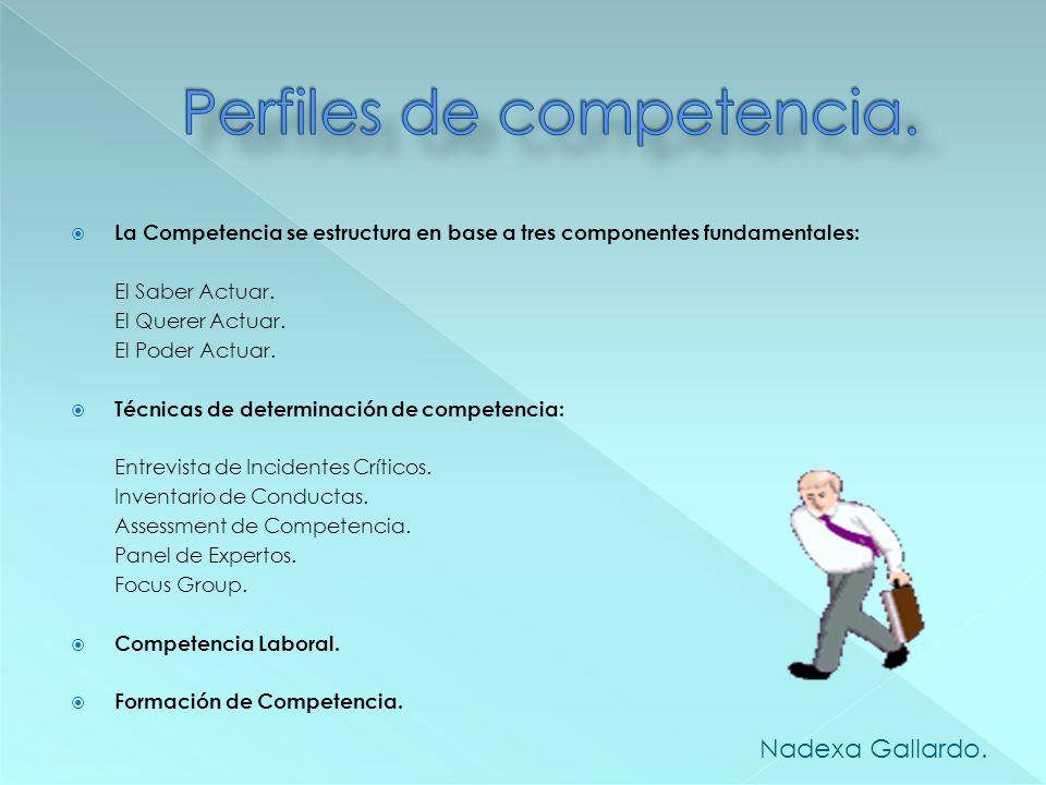 ¿Qué es competencia? Modelos de competencia laborales Modelos: Funcional, Conductista y Constructivista. Competencia de Logro y Acción. Competencia de