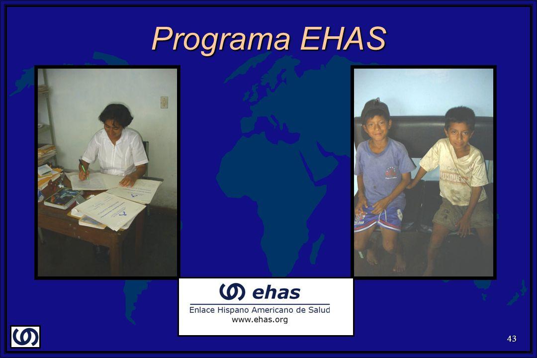 43 Programa EHAS