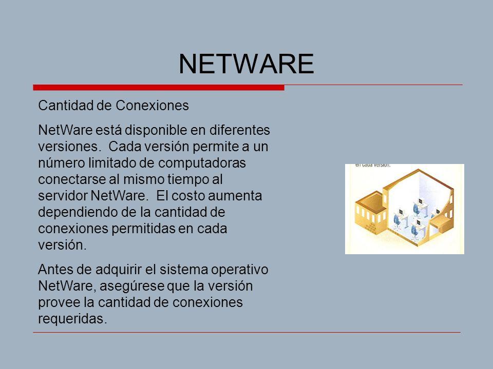NETWARE Cantidad de Conexiones NetWare está disponible en diferentes versiones. Cada versión permite a un número limitado de computadoras conectarse a