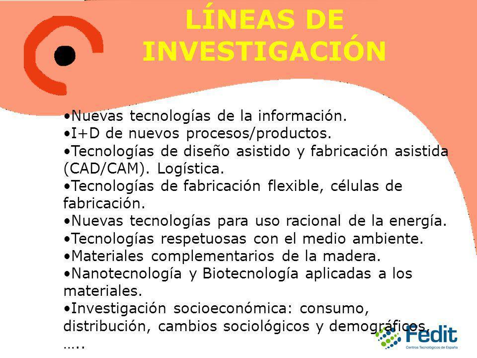 Nuevas tecnologías de la información. I+D de nuevos procesos/productos.