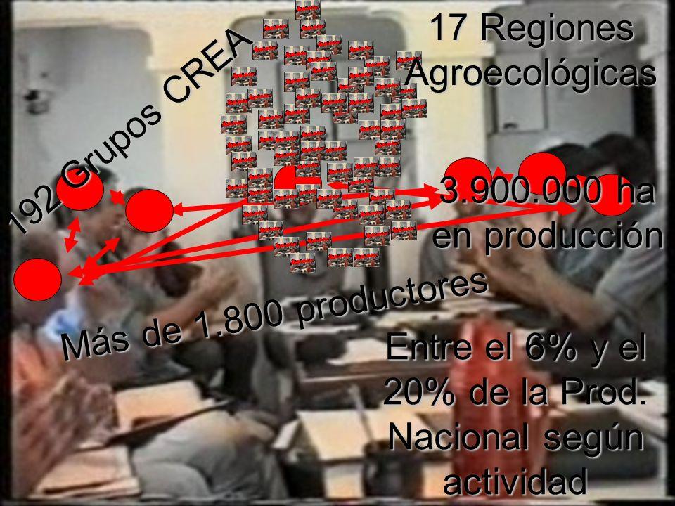 192 Grupos CREA Más de 1.800 productores 17 Regiones Agroecológicas 3.900.000 ha en producción Entre el 6% y el 20% de la Prod.