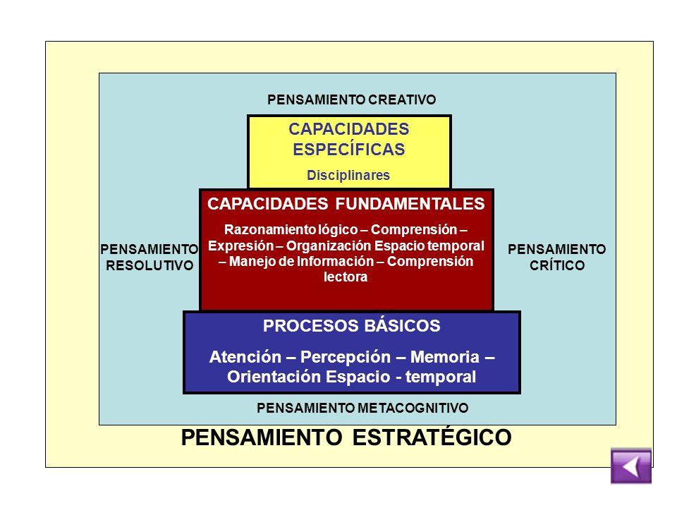 PROCESOS BÁSICOS Atención – Percepción – Memoria – Orientación Espacio - temporal CAPACIDADES FUNDAMENTALES Razonamiento lógico – Comprensión – Expres