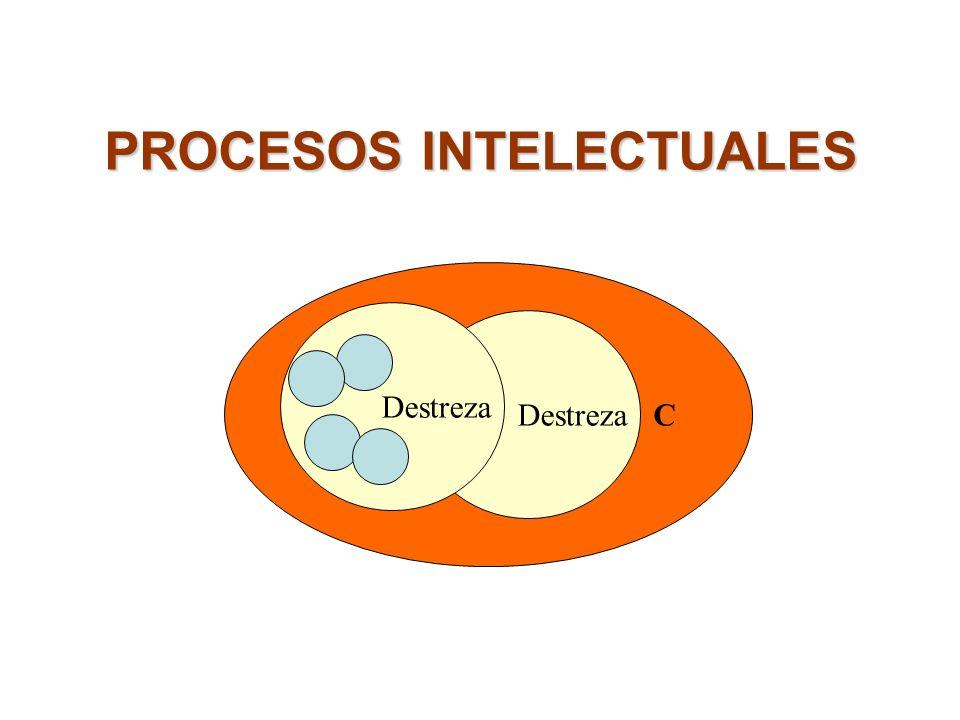 C Destreza PROCESOS INTELECTUALES