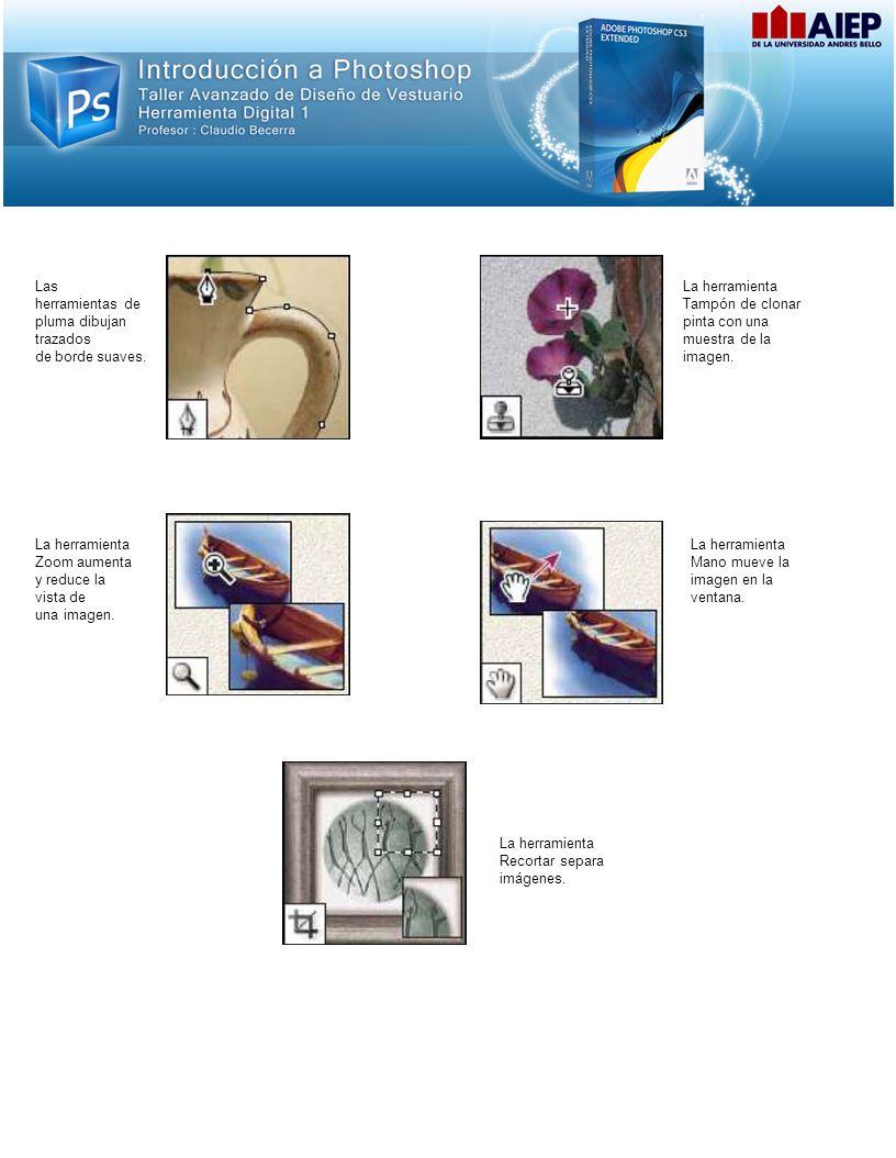 Las herramientas de pluma dibujan trazados de borde suaves. La herramienta Tampón de clonar pinta con una muestra de la imagen. La herramienta Zoom au