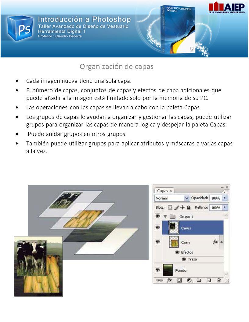 Organización de capas Cada imagen nueva tiene una sola capa. El número de capas, conjuntos de capas y efectos de capa adicionales que puede añadir a l