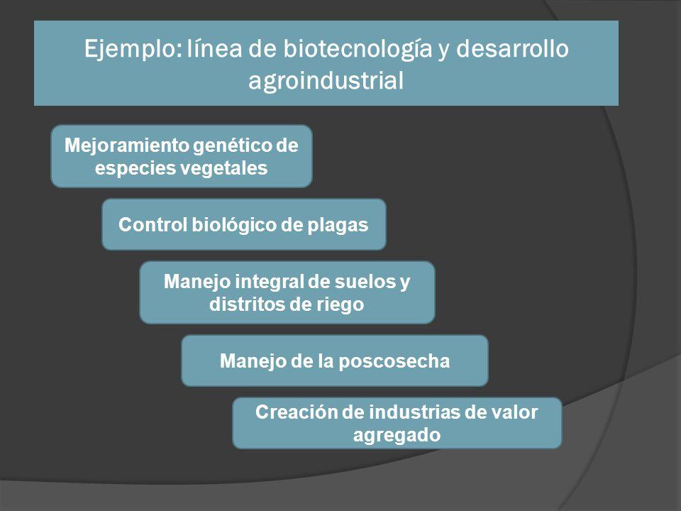 Ejemplo: línea de biotecnología y desarrollo agroindustrial Mejoramiento genético de especies vegetales Control biológico de plagas Manejo integral de