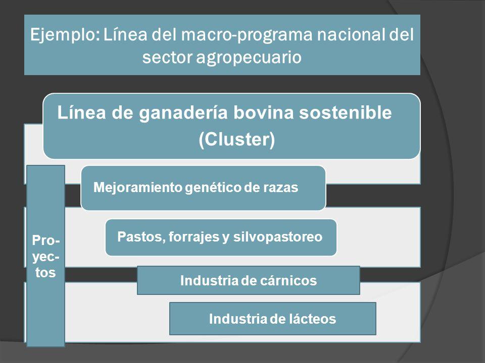 Ejemplo: Línea del macro-programa nacional del sector agropecuario Línea de ganadería bovina sostenible (Cluster) Mejoramiento genético de razas Pasto