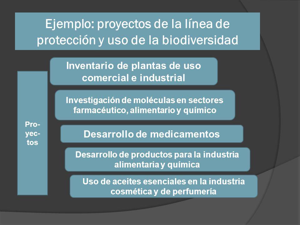 Ejemplo: proyectos de la línea de protección y uso de la biodiversidad Inventario de plantas de uso comercial e industrial Investigación de moléculas