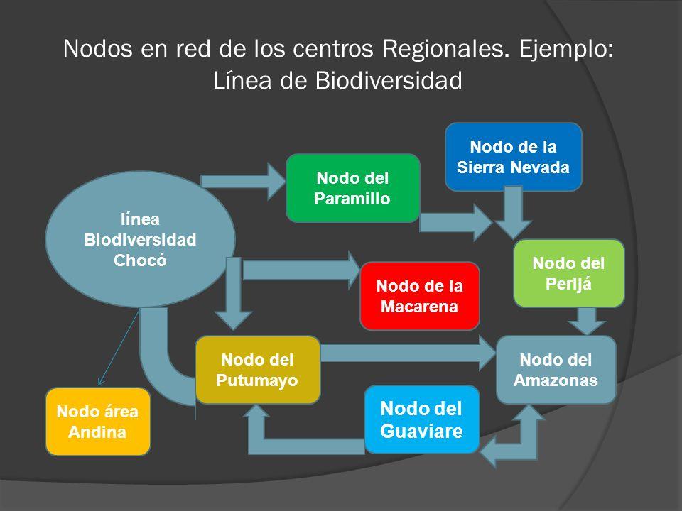 Nodos en red de los centros Regionales. Ejemplo: Línea de Biodiversidad línea Biodiversidad Chocó Nodo del Paramillo Nodo de la Sierra Nevada Nodo del