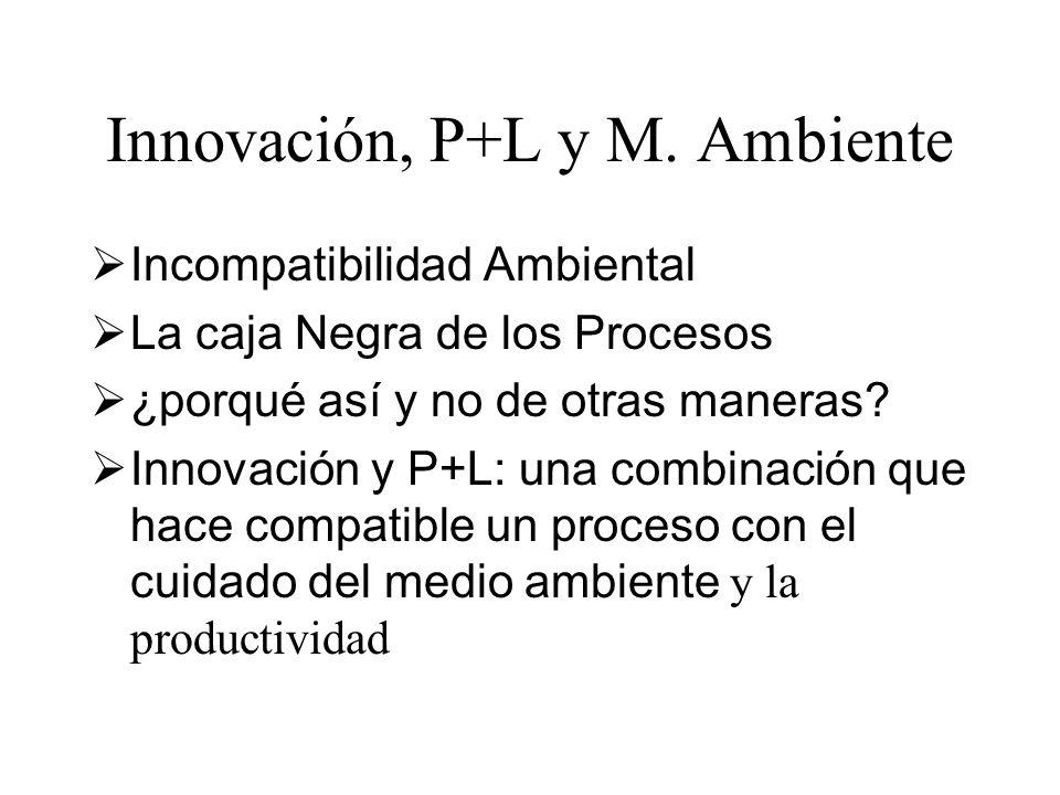 Innovación, P+L y M. Ambiente Incompatibilidad Ambiental La caja Negra de los Procesos ¿porqué así y no de otras maneras? Innovación y P+L: una combin
