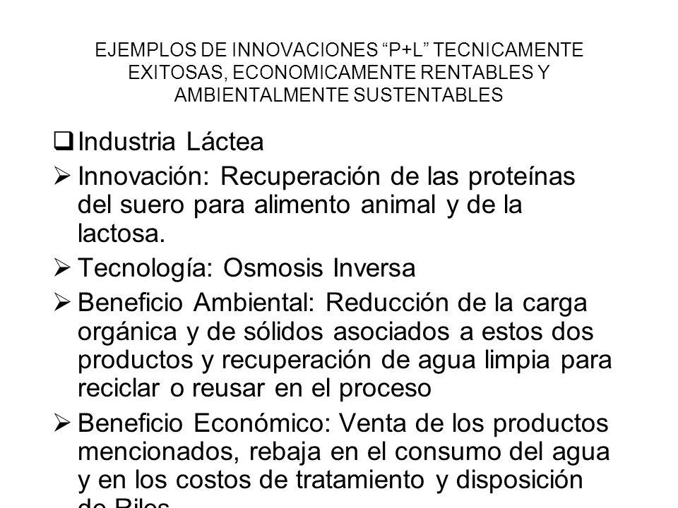 EJEMPLOS DE INNOVACIONES P+L TECNICAMENTE EXITOSAS, ECONOMICAMENTE RENTABLES Y AMBIENTALMENTE SUSTENTABLES Industria de los Alimentos Innovación: Aumento de la recuperación de enzimas industriales ( para hacer cerveza, almidón, glucosa, etc.) en los procesos de producción de los mismos.