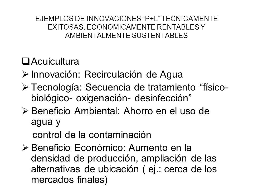 EJEMPLOS DE INNOVACIONES P+L TECNICAMENTE EXITOSAS, ECONOMICAMENTE RENTABLES Y AMBIENTALMENTE SUSTENTABLES Acuicultura Innovación: Recirculación de Ag