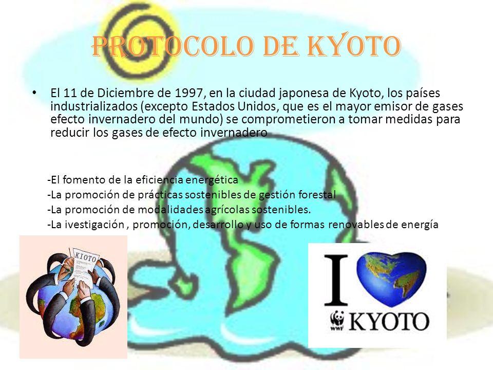 Protocolo de kyoto El 11 de Diciembre de 1997, en la ciudad japonesa de Kyoto, los países industrializados (excepto Estados Unidos, que es el mayor emisor de gases efecto invernadero del mundo) se comprometieron a tomar medidas para reducir los gases de efecto invernadero -El fomento de la eficiencia energética -La promoción de prácticas sostenibles de gestión forestal -La promoción de modalidades agrícolas sostenibles.