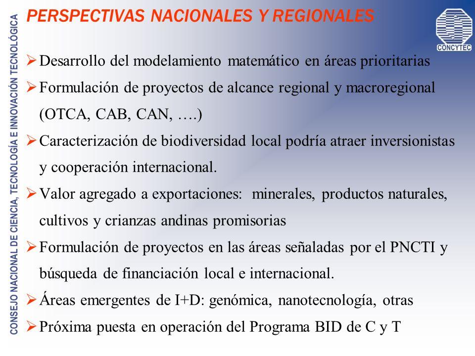 PERSPECTIVAS NACIONALES Y REGIONALES Desarrollo del modelamiento matemático en áreas prioritarias Formulación de proyectos de alcance regional y macro