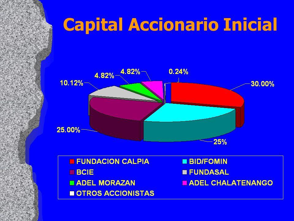 Capital Accionario Inicial