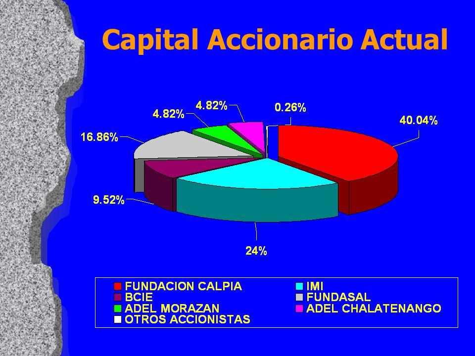 Capital Accionario Actual