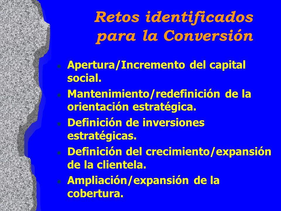 l Apertura/Incremento del capital social. l Mantenimiento/redefinición de la orientación estratégica. l Definición de inversiones estratégicas. l Defi