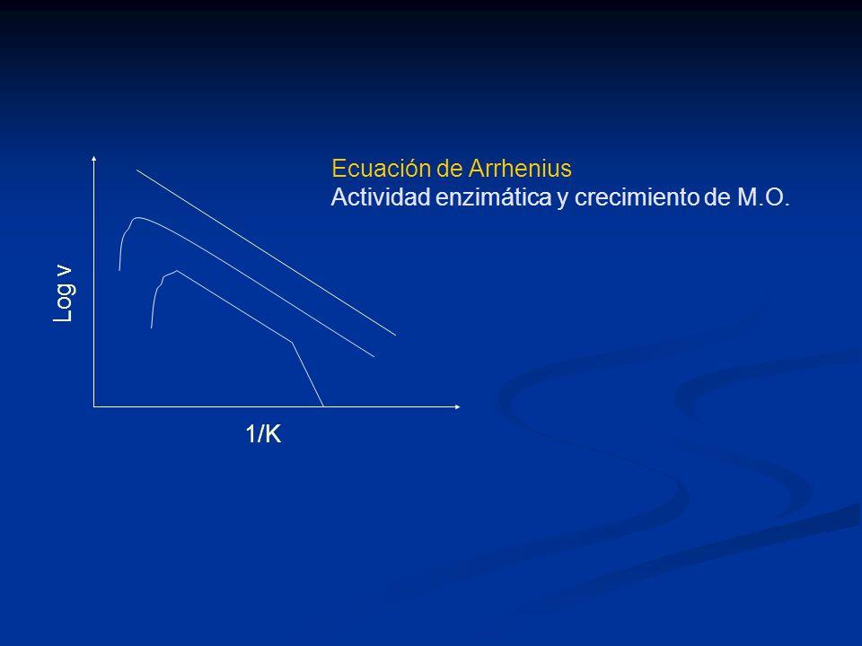 1/K Log v Ecuación de Arrhenius Actividad enzimática y crecimiento de M.O.