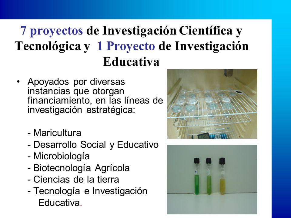 7 proyectos de Investigación Científica y Tecnológica y 1 Proyecto de Investigación Educativa Apoyados por diversas instancias que otorgan financiamiento, en las líneas de investigación estratégica: - Maricultura - Desarrollo Social y Educativo - Microbiología - Biotecnología Agrícola - Ciencias de la tierra - Tecnología e Investigación Educativa.