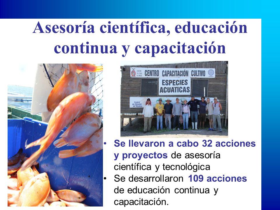 Asesoría científica, educación continua y capacitación Se llevaron a cabo 32 acciones y proyectos de asesoría científica y tecnológica Se desarrollaron 109 acciones de educación continua y capacitación.