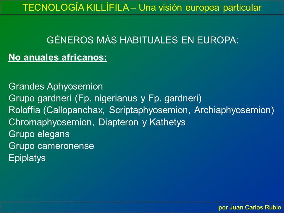 TECNOLOGÍA KILLÍFILA – Una visión europea particular por Juan Carlos Rubio GÉNEROS MÁS HABITUALES EN EUROPA: No anuales africanos: Grandes Aphyosemion Grupo gardneri (Fp.