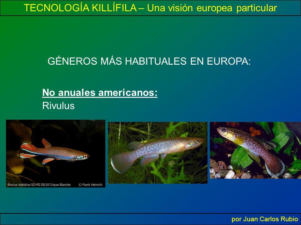 TECNOLOGÍA KILLÍFILA – Una visión europea particular por Juan Carlos Rubio GÉNEROS MÁS HABITUALES EN EUROPA: No anuales americanos: Rivulus