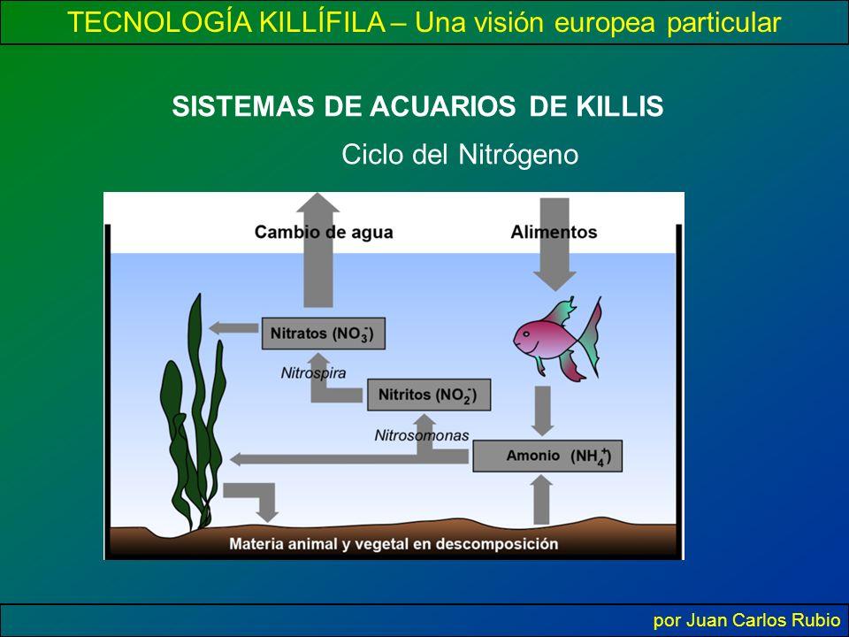TECNOLOGÍA KILLÍFILA – Una visión europea particular por Juan Carlos Rubio SISTEMAS DE ACUARIOS DE KILLIS Ciclo del Nitrógeno