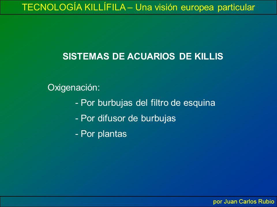 TECNOLOGÍA KILLÍFILA – Una visión europea particular por Juan Carlos Rubio SISTEMAS DE ACUARIOS DE KILLIS Oxigenación: - Por burbujas del filtro de esquina - Por difusor de burbujas - Por plantas