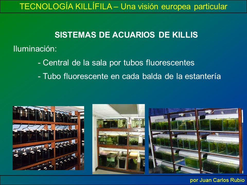 TECNOLOGÍA KILLÍFILA – Una visión europea particular por Juan Carlos Rubio SISTEMAS DE ACUARIOS DE KILLIS Iluminación: - Central de la sala por tubos fluorescentes - Tubo fluorescente en cada balda de la estantería