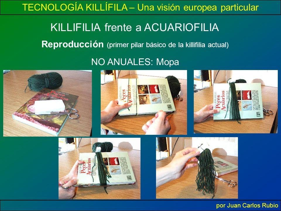 TECNOLOGÍA KILLÍFILA – Una visión europea particular por Juan Carlos Rubio Reproducción (primer pilar básico de la killifilia actual) KILLIFILIA frente a ACUARIOFILIA NO ANUALES: Mopa
