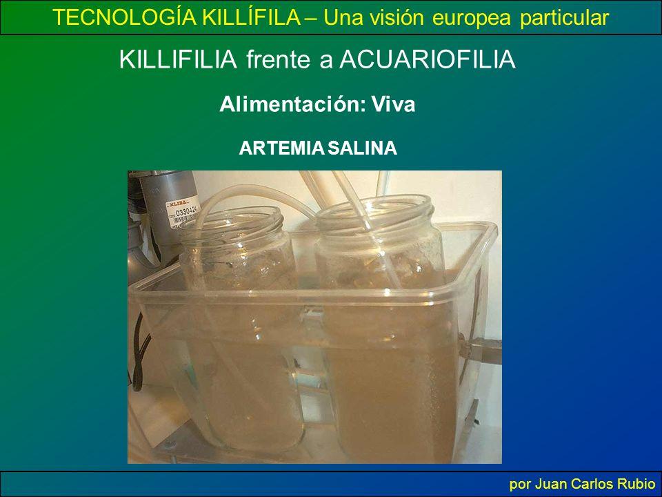 TECNOLOGÍA KILLÍFILA – Una visión europea particular por Juan Carlos Rubio Alimentación: Viva KILLIFILIA frente a ACUARIOFILIA ARTEMIA SALINA