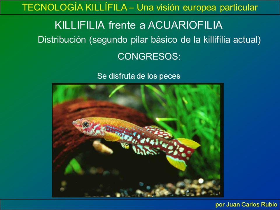 TECNOLOGÍA KILLÍFILA – Una visión europea particular por Juan Carlos Rubio KILLIFILIA frente a ACUARIOFILIA Distribución (segundo pilar básico de la killifilia actual) CONGRESOS: Se disfruta de los peces
