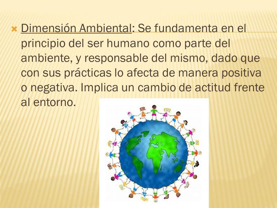 Dimensión Ambiental: Se fundamenta en el principio del ser humano como parte del ambiente, y responsable del mismo, dado que con sus prácticas lo afecta de manera positiva o negativa.