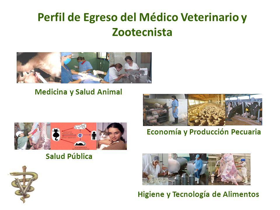 Perfil de Egreso del Médico Veterinario y Zootecnista Medicina y Salud Animal Economía y Producción Pecuaria Salud Pública Higiene y Tecnología de Ali
