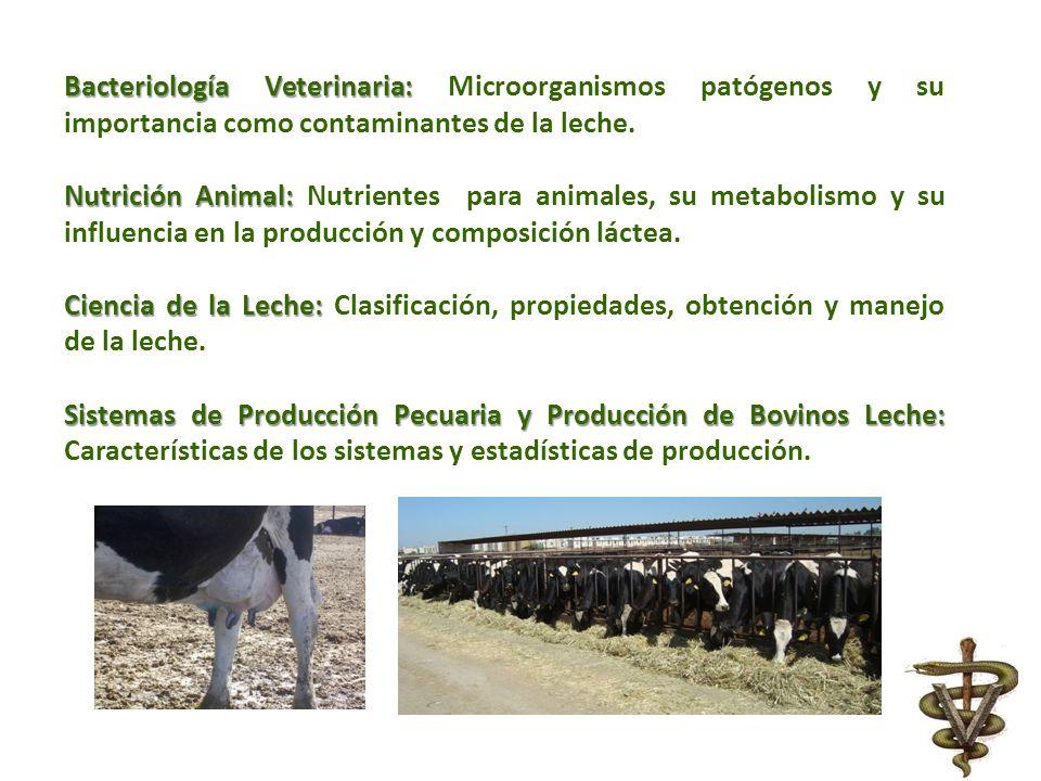 Bacteriología Veterinaria: Bacteriología Veterinaria: Microorganismos patógenos y su importancia como contaminantes de la leche. Nutrición Animal: Nut