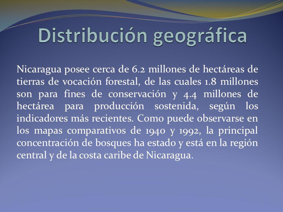 Nicaragua posee cerca de 6.2 millones de hectáreas de tierras de vocación forestal, de las cuales 1.8 millones son para fines de conservación y 4.4 millones de hectárea para producción sostenida, según los indicadores más recientes.
