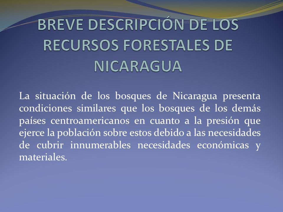 La situación de los bosques de Nicaragua presenta condiciones similares que los bosques de los demás países centroamericanos en cuanto a la presión que ejerce la población sobre estos debido a las necesidades de cubrir innumerables necesidades económicas y materiales.