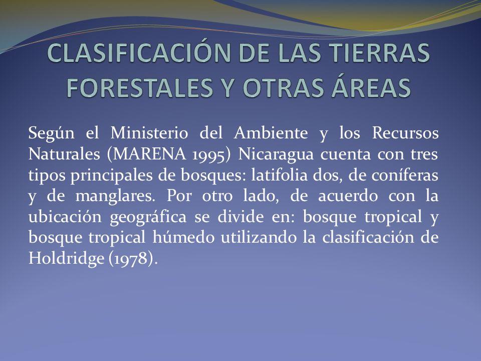 Según el Ministerio del Ambiente y los Recursos Naturales (MARENA 1995) Nicaragua cuenta con tres tipos principales de bosques: latifolia dos, de coníferas y de manglares.
