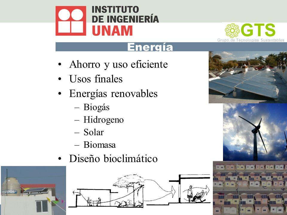 Energía Ahorro y uso eficiente Usos finales Energías renovables –Biogás –Hidrogeno –Solar –Biomasa Diseño bioclimático GTS Grupo de Tecnologías Sustentables