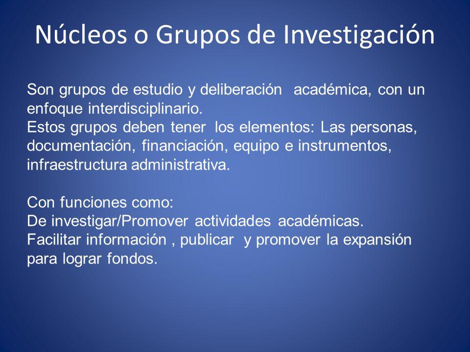 Núcleos o Grupos de Investigación Son grupos de estudio y deliberación académica, con un enfoque interdisciplinario. Estos grupos deben tener los elem