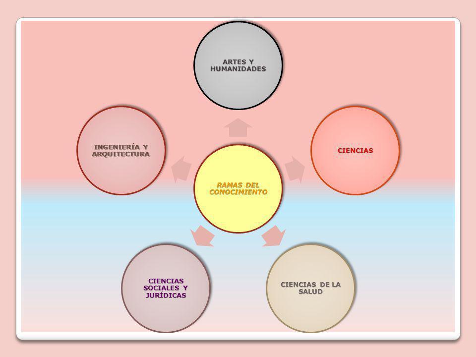 RAMAS DEL CONOCIMIENTO ARTES Y HUMANIDADES CIENCIAS CIENCIAS DE LA SALUD CIENCIAS SOCIALES Y JURÍDICAS INGENIERÍA Y ARQUITECTURA