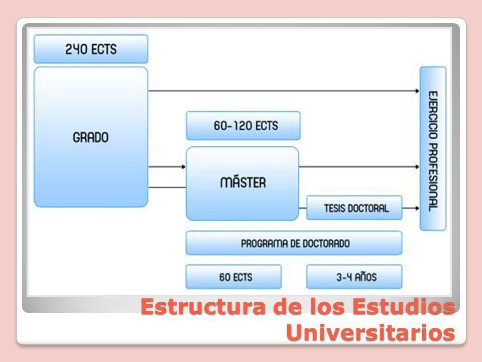 Estructura de los Estudios Universitarios