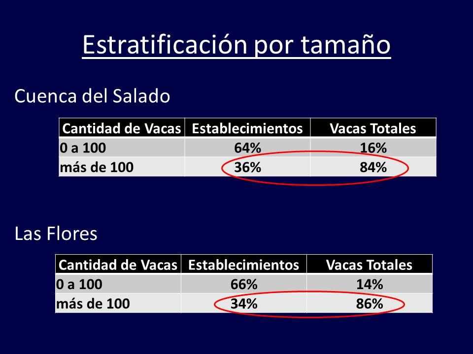 Estratificación por tamaño Cuenca del Salado Las Flores Cantidad de VacasEstablecimientosVacas Totales 0 a 10064%16% más de 10036%84% Cantidad de Vaca