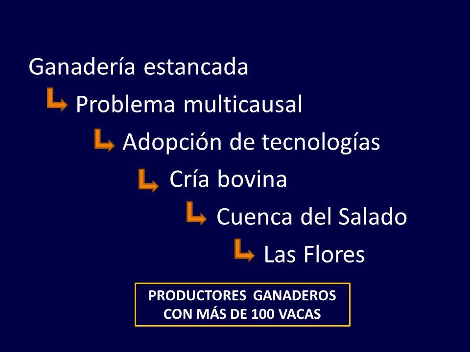 Ganadería estancada Problema multicausal Adopción de tecnologías Cría bovina Cuenca del Salado Las Flores PRODUCTORES GANADEROS CON MÁS DE 100 VACAS