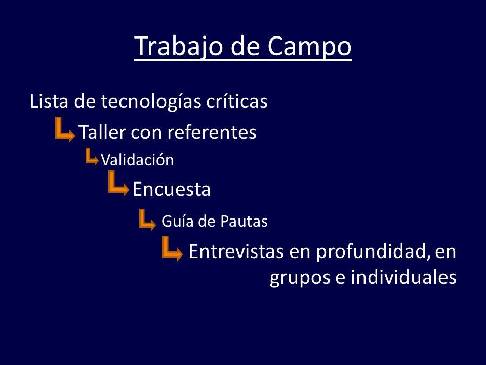 Trabajo de Campo Lista de tecnologías críticas Taller con referentes Validación Encuesta Guía de Pautas Entrevistas en profundidad, en grupos e indivi