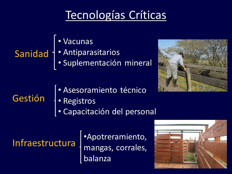 Tecnologías Críticas Sanidad Gestión Infraestructura Vacunas Antiparasitarios Suplementación mineral Asesoramiento técnico Registros Capacitación del